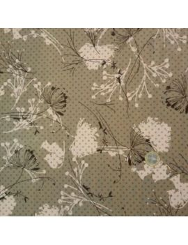 coton fleur ombre